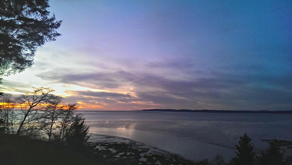 Willipa Bay